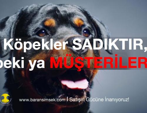 Köpekler Sadıktır Peki Ya Müşteriler?